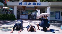 น่ารักปนฮา! สตาฟญี่ปุ่นวิงวอนผ่านทวิตเตอร์ มาเที่ยว พิพิธภัณฑ์สัตว์น้ำ กันเถอะ