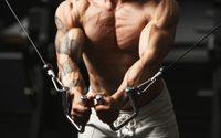 5 เคล็ดลับ การสร้างกล้ามแขน เพื่อผลลัพธ์ที่ออกมาเร็ว แบบเท่ๆ แมนๆ