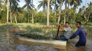 น้ำป่าทะลักท่วมไร่สับปะรดเกษตรกร อ.บางสะพาน เดือดร้อนหนัก