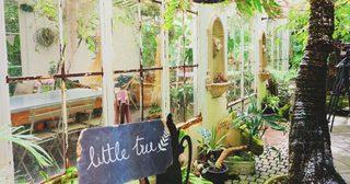 Little Tree Garden ความอร่อยที่ซ่อนอยู่ในสวนหลังบ้าน