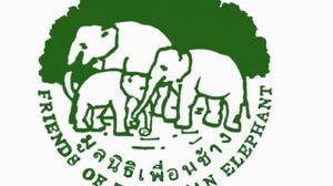 ผู้ก่อตั้ง ประกาศขอยุติ มูลนิธิเพื่อนช้าง หลังทำงานมาร่วม 25 ปี