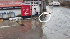 กราบหัวใจ เด็กหญิง ป.6 ขนหินปูทางเดิน ให้คนเดินข้ามน้ำท่วมขัง