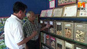 หนึ่งเดียวในพะเยา! ชายวัย 76 สืบทอดภูมิปัญญาสมุนไพรไทยนานกว่า 40 ปี
