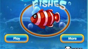 เกมส์จับคู่สัตว์ทะเล Couple Fishes
