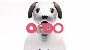Sony Aibo หุ่นยนต์น้องหมา ที่อาจมาแทนหมาจริงได้ในอนาคต