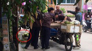 ได้ใจชาวเน็ต!! โจ๋อาชีวะปรี่ช่วยลุงเก็บมะพร้าว หลังเทกระจาดเกลื่อนถนน