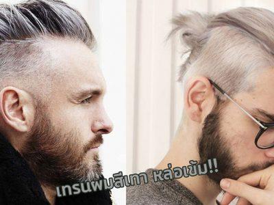 ผมสีเทาผู้ชาย ทรงผมชายเทรนมาแรง Silver Hair Stlye for Men