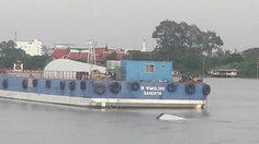 เรือบรรทุกเสากังหัน ล่มกลางเจ้าพระยา เร่งกู้วันนี้