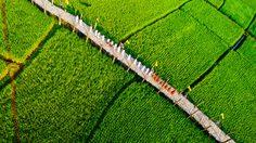 9 สะพานไม้สุด unseen ในไทย ชมวิวสวยๆ ใกล้ชิดธรรมชาติ