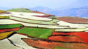 เที่ยวหุบเขาหลากสี ทางตอนใต้ของจีน
