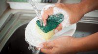 เสี่ยงอาหารเป็นพิษ!! ฟองน้ำล้างจาน แหล่งสะสมเชื้อโรคชั้นดีที่ต้องระวัง