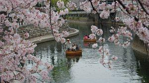 สถานที่ท่องเที่ยวตามช่วงฤดูกาลที่แนะนำ จังหวัดกิฟุ (Gifu) ญี่ปุ่น