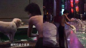 หนุ่มไร้บ้านทำงานเก็บขยะขายหาเงิน 200 หยวน ช่วยหมาจรจัดบาดเจ็บ
