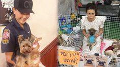 เก๋ ชลลดา นางฟ้าใจดี ของ น้องหมา ชีวิตนี้ขอทำดี ตราบจนลมหายใจสุดท้าย!!