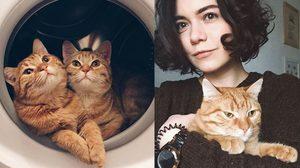 เมื่อสาวรัสเซีย นำ แมวแฝด มาเลี้ยงที่บ้าน ความรักน่ารักจึงบังเกิด