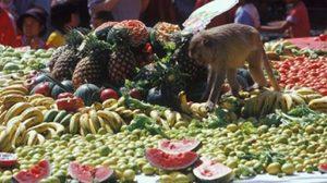 งานเลี้ยงโต๊ะจีนลิง ครั้งที่ 25 ที่ ลพบุรี