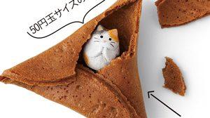 เทรนด์ใหม่คนรักแมว คุกกี้เสี่ยงทาย สอดไส้แมวน้อย