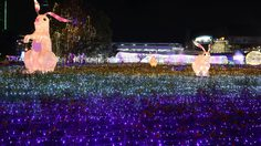 """ตระการตากับไฟ LED กว่าล้านดวง ในงาน """"ศิลป์แสง แห่งแรงบันดาลใจ"""""""