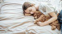 7 ข้อควรทำ แต่งบ้าน ให้เฟรนด์ลี่ แฮปปี้ทั้งคนและ สัตว์เลี้ยง แสนรัก