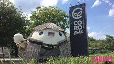 ชวนเที่ยว Coro Field คาเฟ่อากาศดี