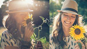 ดอกกุหลาบ หลบไป เมื่อคู่รักรู้ความหมาย ดอกทานตะวัน