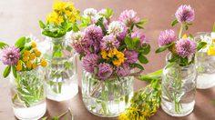 ใช้วิธีนี้สิ! 3 วิธีล้างแจกัน ดอกไม้ สุดง่าย ให้กลับมาใสกิ๊งๆ เหมือนใหม่