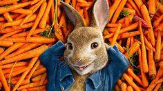 รีวิว Peter Rabbit