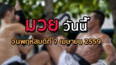 โปรแกรมมวยไทยวันนี้ วันพฤหัสบดีที่ 7 เมษายน 2559