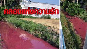 ชาวบ้านผวา หลังพบน้ำในคลองเป็นสีชมพู กังวลจะพิษร้ายแรง