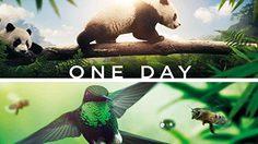 5 หนังที่น่าดูย้อนหลัง จากวันสัตว์ป่าและพืชป่าโลก 3 มีนาคม World Wildlife Day