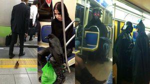 รวม คนแปลกๆ บนรถไฟฟ้า จากทั่วโลก เห็นแล้วอดหยิบมือถือมาถ่ายไม่ได้จริงๆ