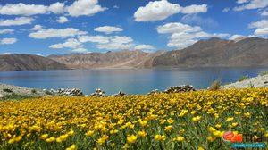 เลห์ – ลาดักห์ ทิเบตน้อยแห่งเทือกเขาหิมาลัย ตอน 1 (เที่ยวอินเดีย)