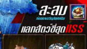 DivoSaga Thailand กระหน่ำเติมต้อนรับซีซั่นลุยฝน