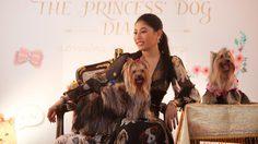พระเจ้าหลานเธอ พระองค์เจ้าสิริวัณณวรีนารีรัตน์ ประทานสัมภาษณ์พิเศษ เกี่ยวกับ คุณน้ำหอม สุนัขทรงเลี้ยง