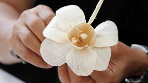 ผู้ว่าฯ กทม. ชวนเป็นจิตอาสาร่วมทำดอกไม้จันทน์ 24 – 28 เม.ย.นี้