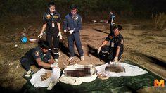 พบศพ! สาวนิรนาม เน่าเปลื่อยกลางป่า ไม่ชัดฆาตกรรมหรือตายเอง