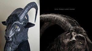 แพะดำ The Witch ขายดีจนเป็นเทรนด์บนเว็บสินค้าแฮนด์เมด Etsy.com