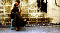 """จากจุดเริ่มต้นถึงวันนี้ : 7 ปีที่รอคอยของ """"แมลงในสวนหลังบ้าน"""""""