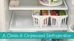 bins-in-fridge