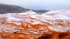 เป็นไปได้ยากมากๆ ที่เราจะมีโอกาสได้เห็น หิมะตก ที่ ทะเลทรายซาฮารา หนึ่งในสถานที่ที่แห้งแล้งที่สุดของโลกแห่งนี้ โดยเหตุเกิดที่เมือง Ain Sefra ประเทศอัลจีเรีย ผู้คนตกใจไม่น้อยที่ได้เห็น หิมะสีขาวปกคลุมทะเลทรายแห่งนี้ แต่เพียงไม่นานหิมะพวกนี้ก็ละลายหายไป คงจะสู้ความร้อนของทะเลทรายไม่ได้แน่ๆ >,< ซึ่งเปารกฏการณ์ หิมะตกที่ทะเลทรายซาฮารา นี้เคยเกิดขึ้นมาแล้วครั้งหนึ่ง ในเดือนกุมภาพันธ์ ในปี 1979