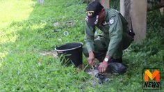 หวิดบึ้ม ! คนตัดหญ้าพบระเบิดซุกใต้สะพานกลางเมืองจันทบุรี