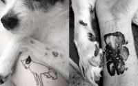 รอยสักสุนัข ที่มีความหมายลึกซึ้งระหว่างตัวเจ้าของและน้องหมา