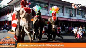 ช้างและเพนกวินซานต้า! สีสันในเทศกาลคริสต์มาส