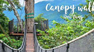 เปิดแล้ว! Tree Top Walk กิจกรรมใหม่สุดเสียวท่ามกลางป่าใหญ่ ณ สวนแม่ฟ้าหลวง จ.เชียงราย