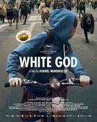 White God 4 ขา ล่าปิดเมือง