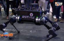 ANYmal หุ่นยนต์ 4 ขาสารพัดประโยชน์