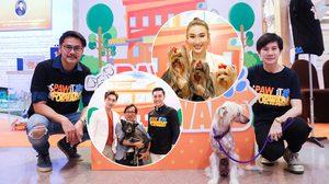 """""""นัททิว-กระติ๊บ-เชน-เวฟ"""" ชวนคนไทยเลี้ยงน้องหมาอย่างใส่ใจ แก้ไขปัญหาสุนัขจรจัด"""