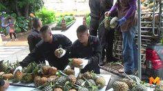 คณะสงฆ์เชียงใหม่ซื้อสับปะรดกว่าหมื่นกิโลกรัม แจกโรงเรียน-ชุมชน