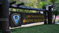 อุทยานแห่งชาติแม่ปิง ลำน้ำในสายหมอก