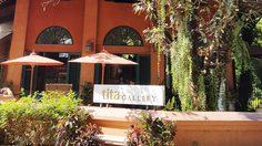 Wawee Coffee Tita Gallery (กาแฟวาวี) ร้านกาแฟอาร์ตๆ ที่แม่ริม เชียงใหม่